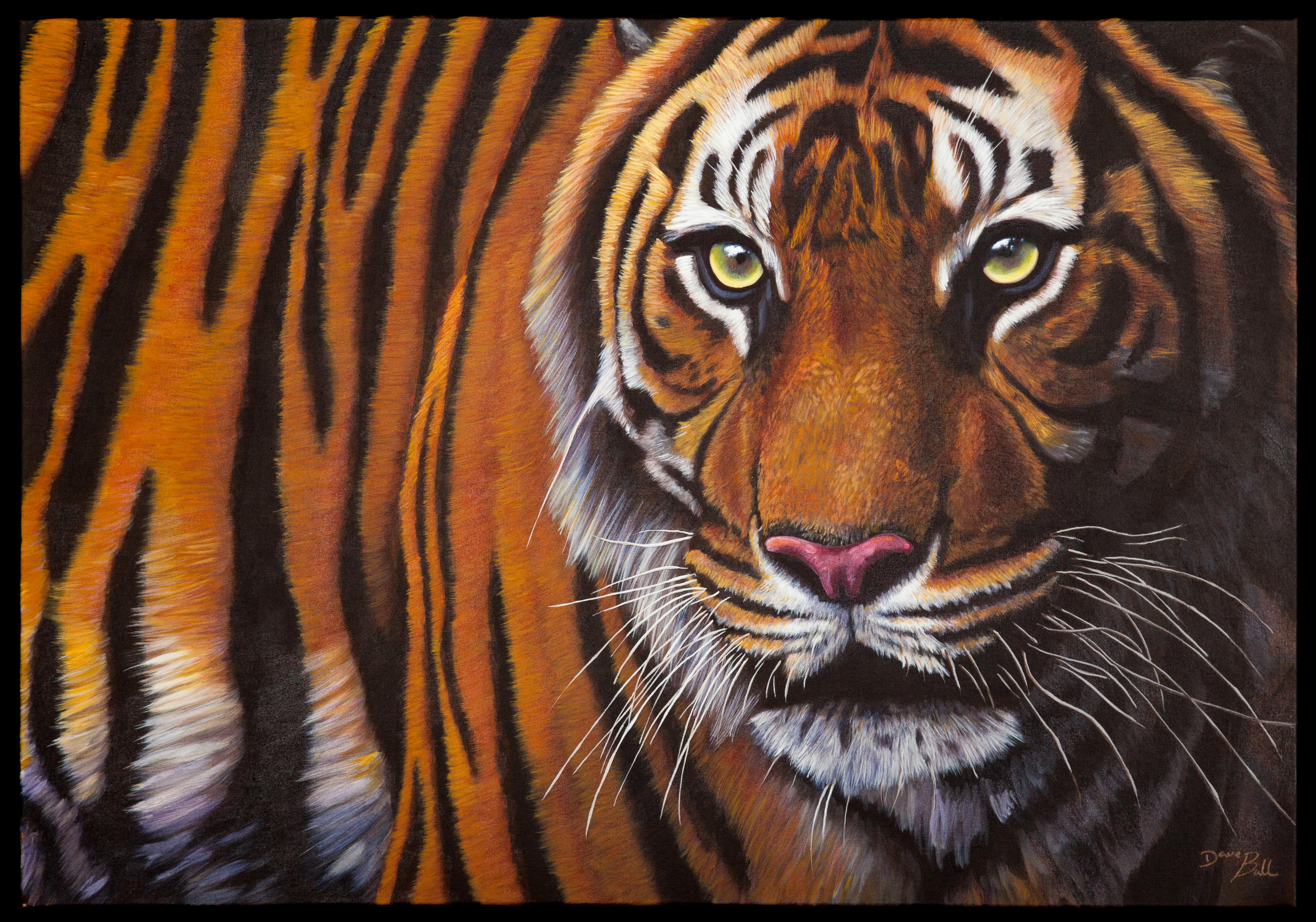 Tiger 100 x 70 cm SOLD