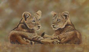 Lion Cubs 120 x 70 cm