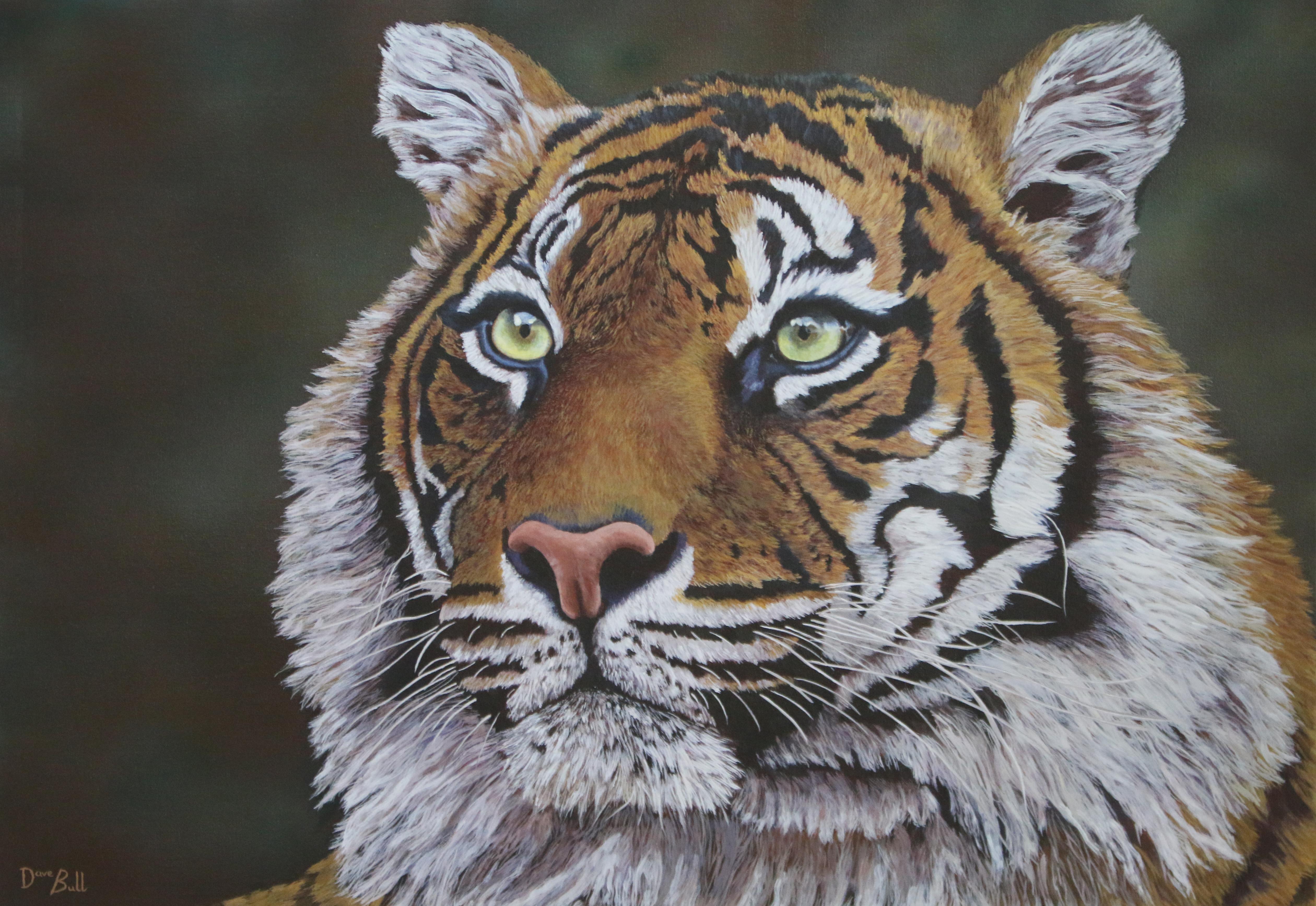 Tiger 100 x 70 cm