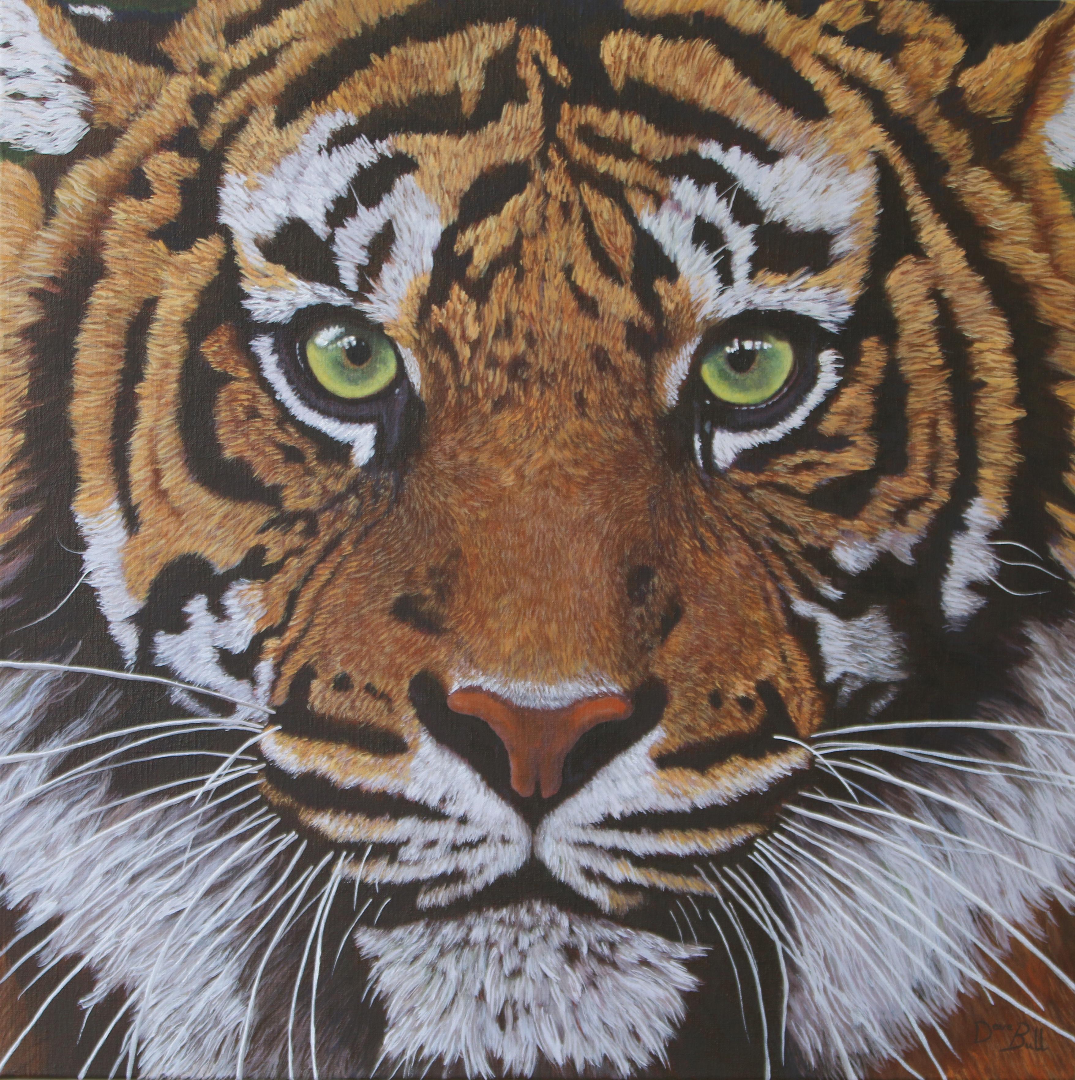 Tiger 70x70 cm