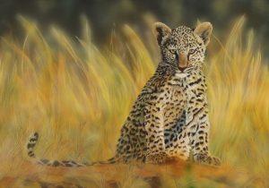 Leopard Cub 100 x 70 cm