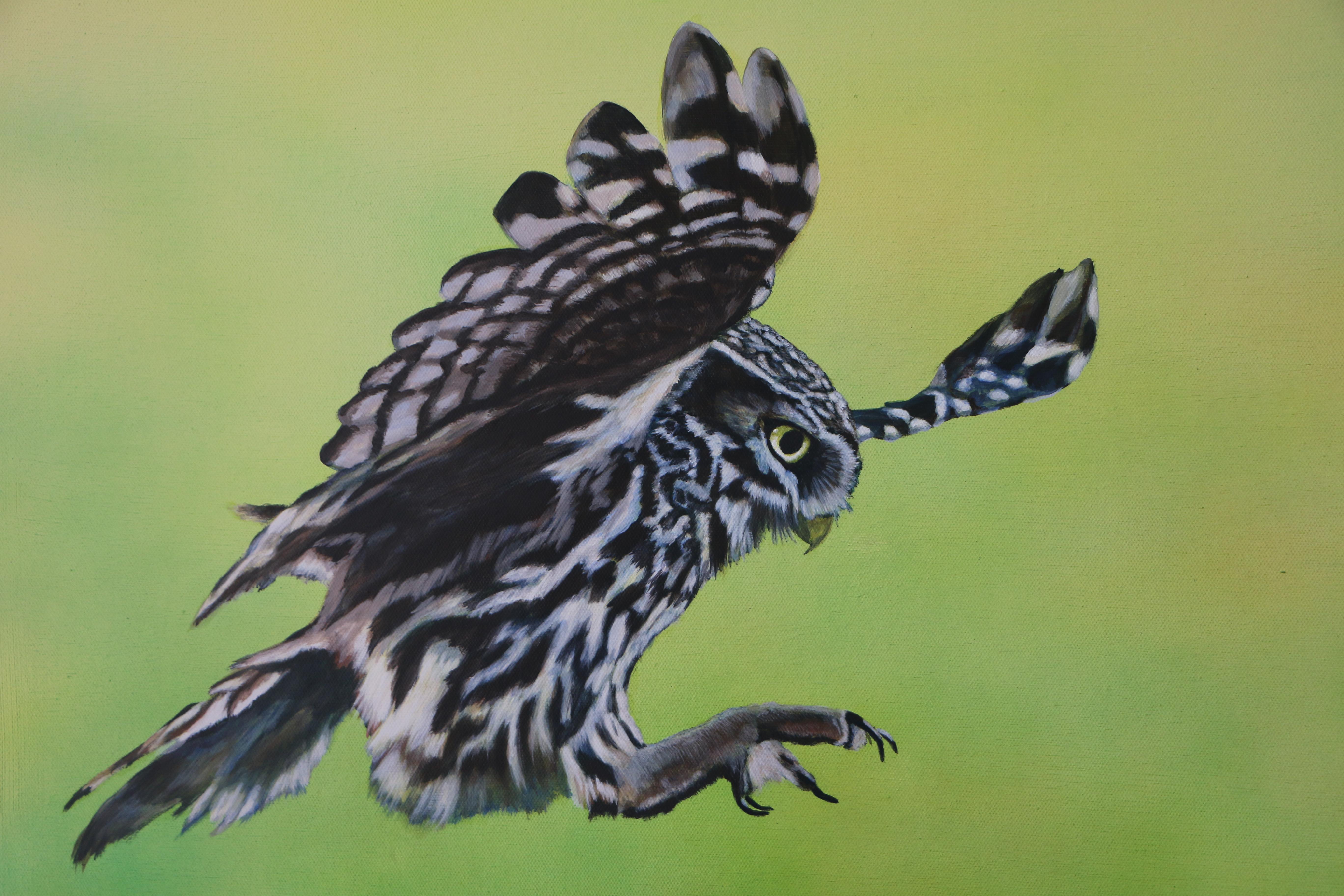 Owl 100 x 70 cm (Close up)